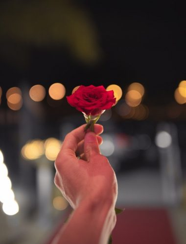 best rose day gift for girlfriend